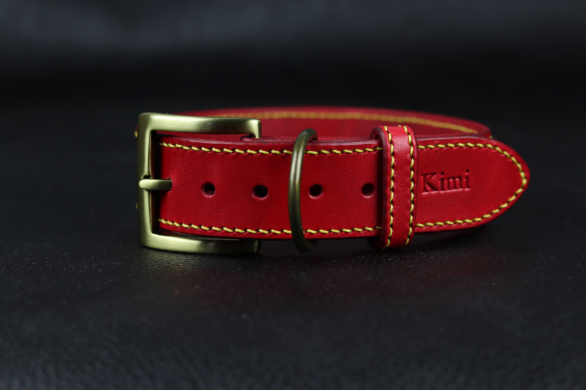 červený obojek pro psa